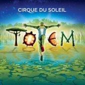 totem_visual